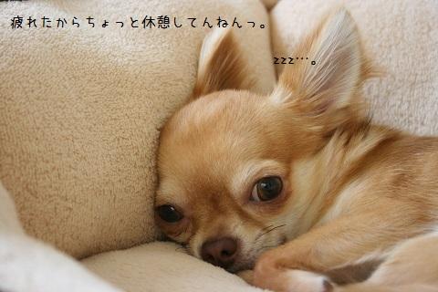 IMG_5255-001.jpg