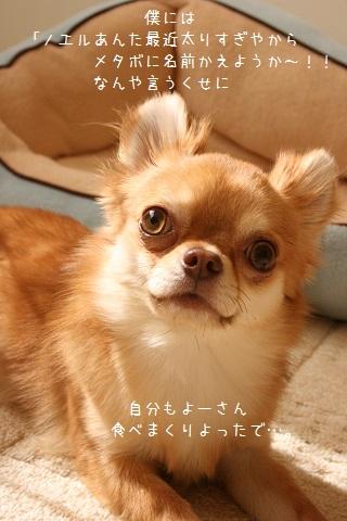 IMG_9809-001.jpg