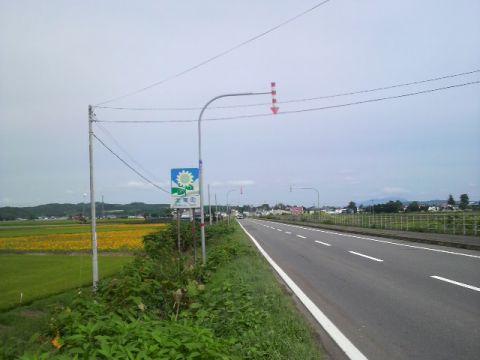 P1011008.jpg