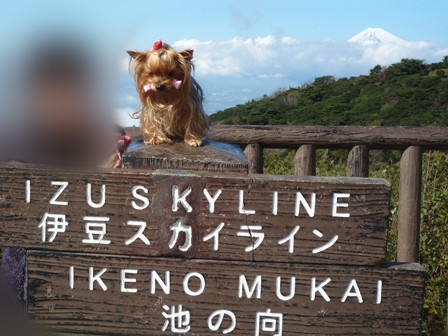もひとつ富士山