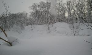 2011-02-11 16.15.17