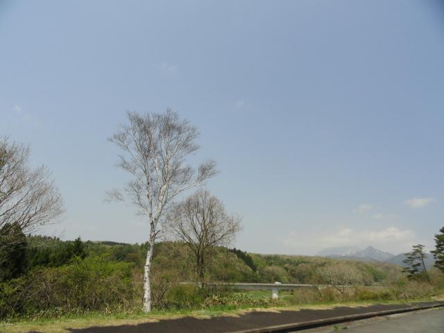DSC02911.jpg