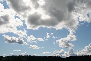20110713_0487.jpg