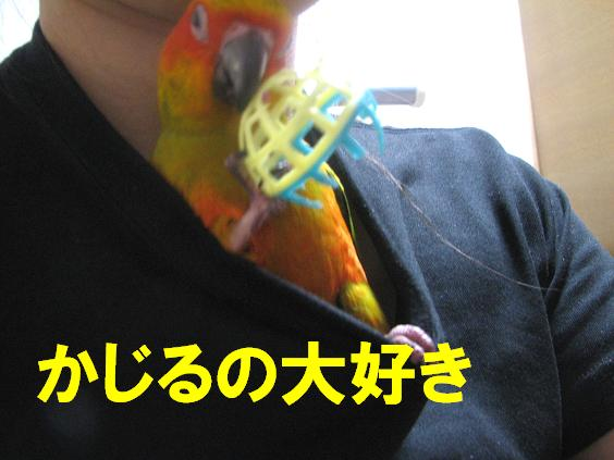 091018_04.jpg