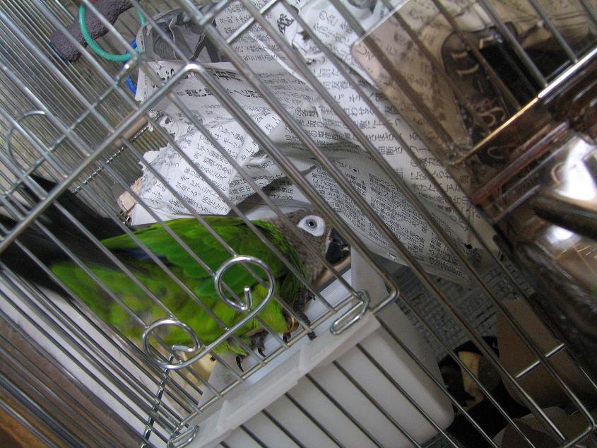 20091012_02.jpg