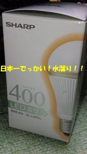 DVC00391.jpg