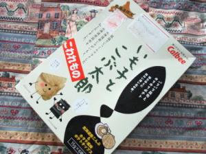 09 10 5IMOKO(2)