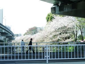 10 4 10edogawabasi (2)