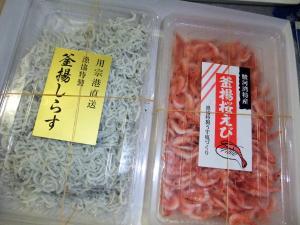 11 7 1 sirasu (2)