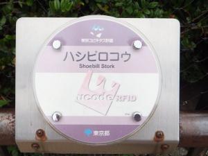 11 7 31hasibirokou(2)
