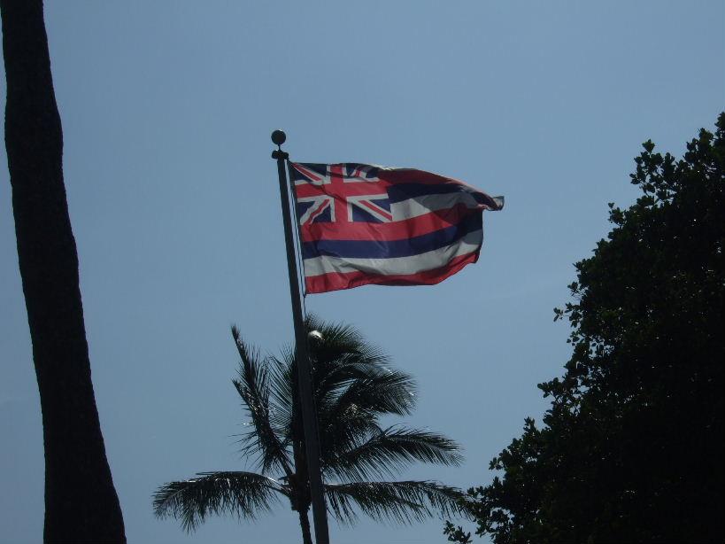王朝廟国旗