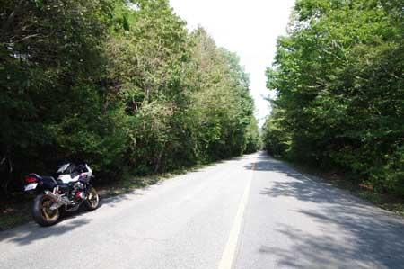 r71富士宮鳴沢線