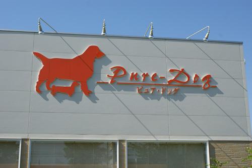 01 Pure-Dog 01