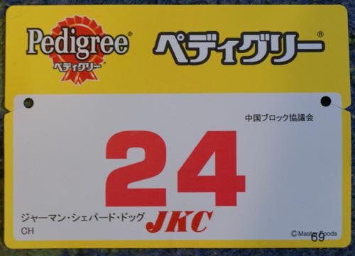 12 №24