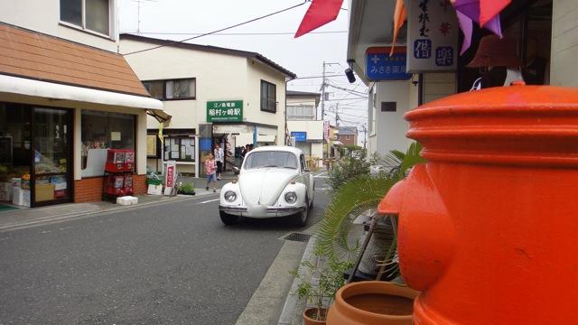 20110614紫陽花7