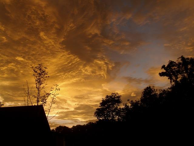 20110907golden.jpg