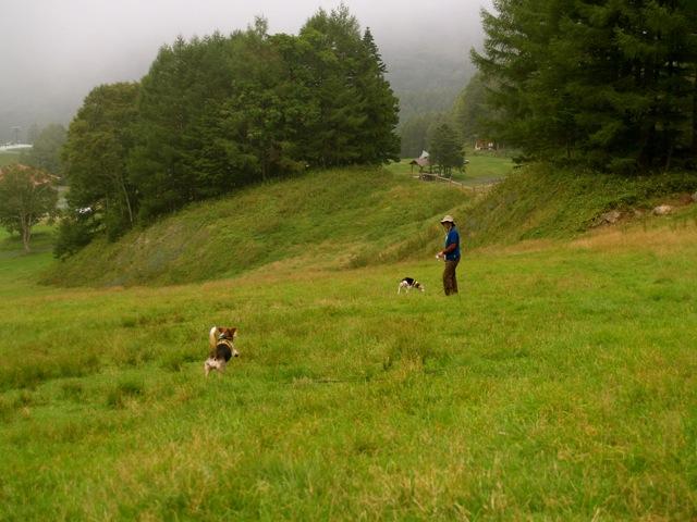 20110913camp1.jpg