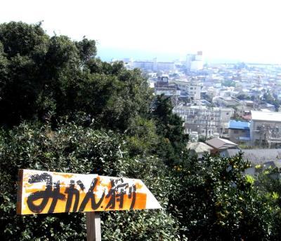 湯河原満喫!みかん狩り 2009.10.18