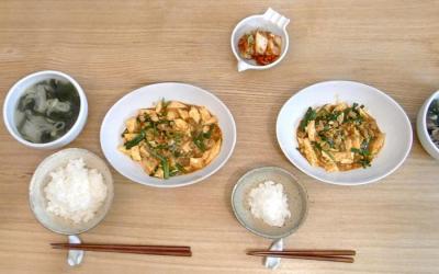 麻婆豆腐 2009.11.5