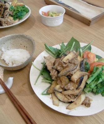 野菜たっぷりプレート 2010.1.7