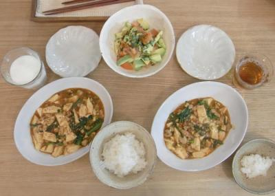 麻婆豆腐とカクテルサラダ 2010.1.21