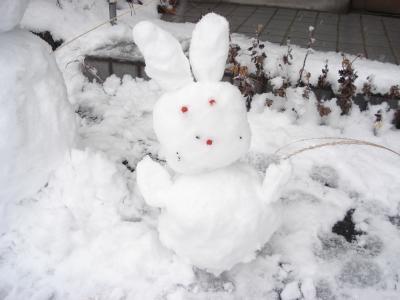 1225雪遊び3