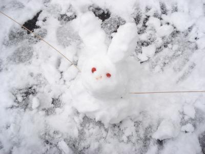 1225雪遊び2