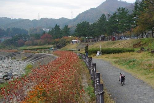 091101お散歩☆