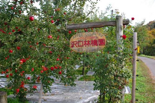 091101りんご園