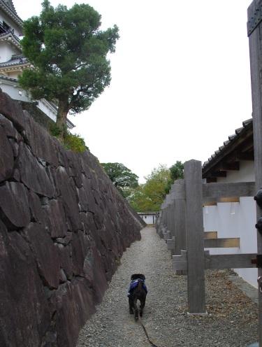 091124掛川城♪