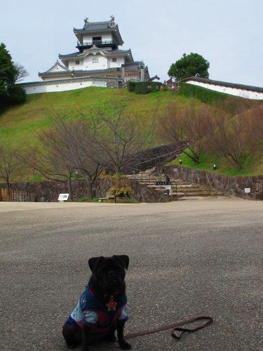 091124掛川城