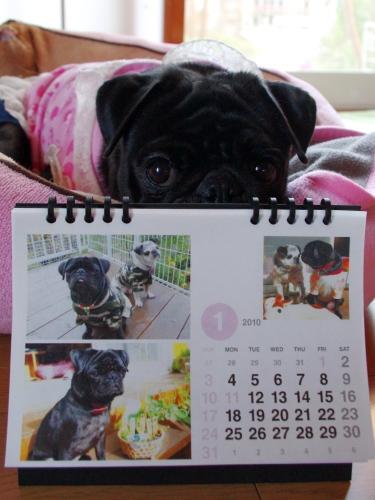1001021月カレンダー