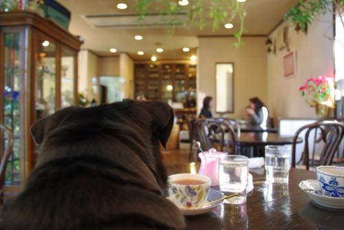 100123カフェ