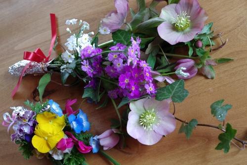 100314お庭のお花