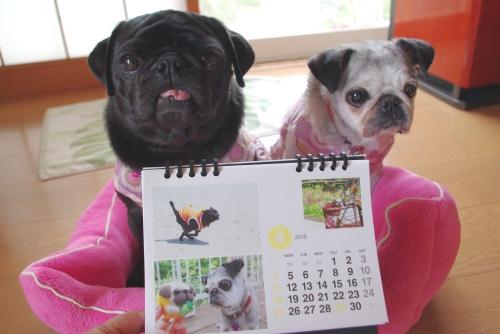 1004014月カレンダー
