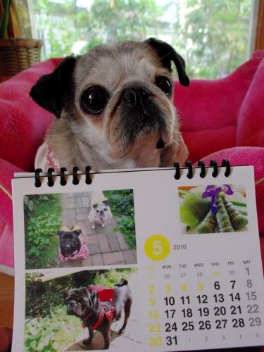 1005015月カレンダー