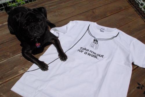 100501Tシャツ