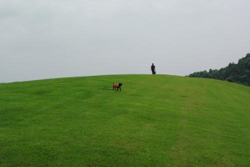 100704風の丘