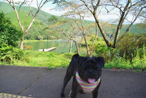 100907田貫湖
