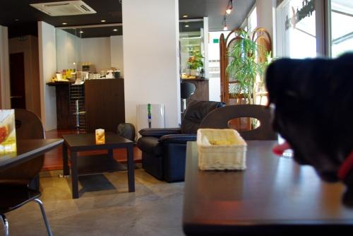 100917カフェ.
