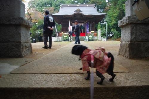 101114神社