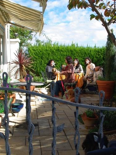101119バジェナちゃんのお庭