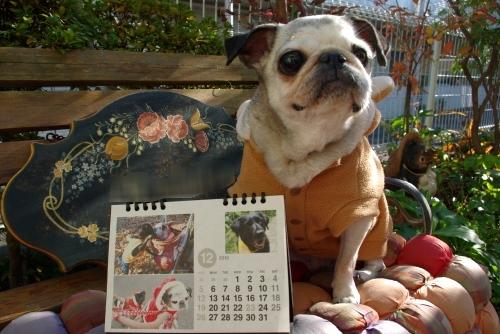 10120112月カレンダー