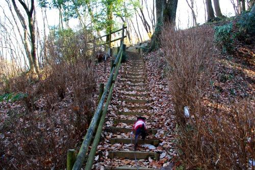 101229階段登って