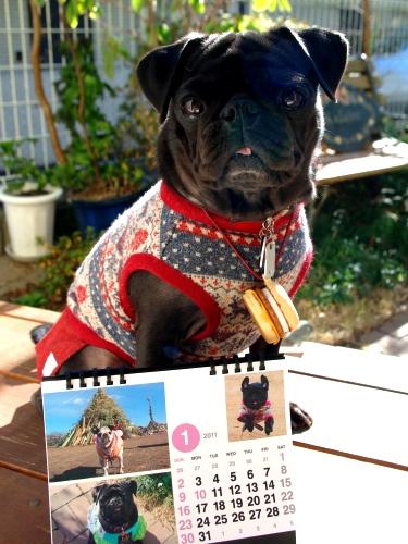 1101021月カレンダー