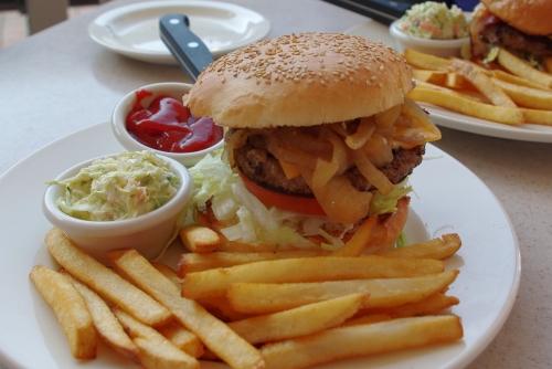 110109ハンバーガー
