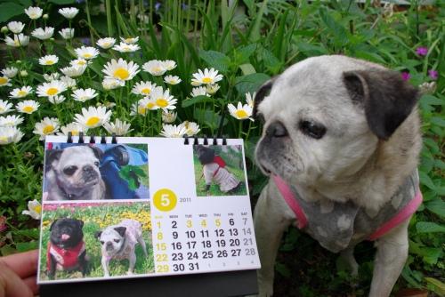 01105015月カレンダー