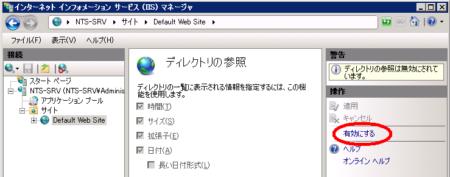 2008iisdirview02.PNG