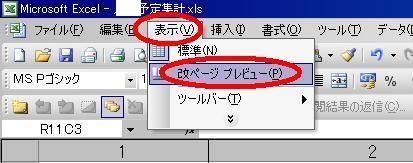 excel-kaipageclr02.JPG
