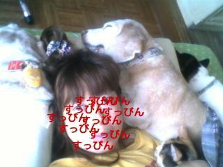 20101120113933.jpg